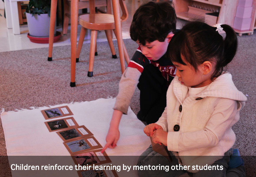 Children reinforce their learning by mentoring other students at Montessori School of Syracuse
